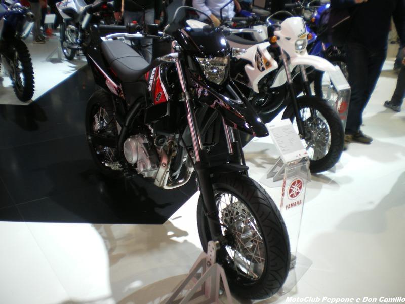 IMGP0028